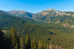 Tatry mountains Royalty Free Stock Photo