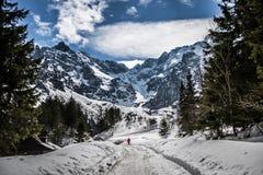 Tatry tid för Polsih bergvinter poland Fotografering för Bildbyråer