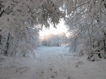 Tatrzańskie góry w Polska i Sistani fotografia stock