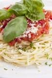 Tatsty fresh spaghetti with tomato sauce and parmesan  Stock Photos
