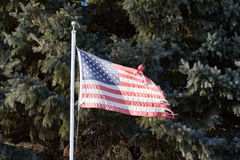 A Tattered Americn Flag Stock Image