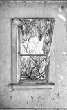 Tattered curtain in old window royalty free stock photos