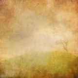 Tattered wall Royalty Free Stock Image
