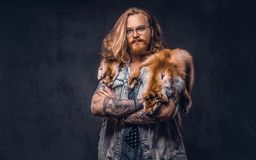 Tattoed redhead hipster male with long luxuriant hair and full beard dressed in a t-shirt and jacket holds the fox skin. On a shoulder in a studio. Isolated on stock photos