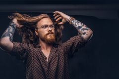 Tattoed redhead man hipster corrects his lush hair dressed in a brown shirt, standing at a studio. Isolated on a dark. Tattoed redhead man hipster corrects his stock image