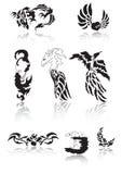 Tattoo. Nice Collection of Tattoo : dragon, love, moon, flower, skull, phoenix Royalty Free Stock Photo