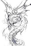 Tattoo art, sketch of a dragon Stock Photos