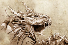Free Tattoo Art, Sketch Of A Anger Medieval Stock Photography - 24139902