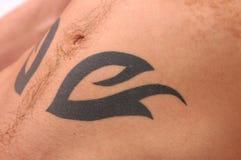 Tattoo Body Royalty Free Stock Photo