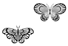 Tattoo butterfly Royalty Free Stock Photos
