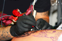 Tattoo close-up Stock Image