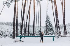Tattoo and daughter walking with snow-covered pine forest royalty free stock photography