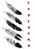 Tattoo design set (feathers) Stock Photo