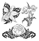 Tattoo with flowers. Three tattoo designs with fantasy hand drawn flowers (orchids, rose) and tribal elements Royalty Free Stock Images