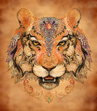 Tattoo, graphics head of a tiger Stock Image