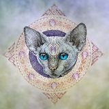 Tattoo, the head cats in the circle Stock Photography