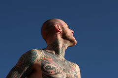 Tattoo man Stock Images