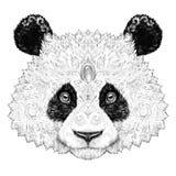 Tattoo Portrait panda bear Stock Images
