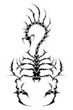 Tattoo scorpion. Vector tattoo scorpion - aggressive tribal Royalty Free Stock Photos