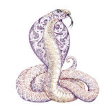 Tattoo snake cobra with open cowled. Tattoo snake cobra with a beautiful floral ornament on the open cowled Stock Photo