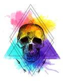 Tattoo style skull. Royalty Free Stock Photos