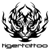 Tattoo - tiger Royalty Free Stock Photography