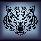 Tattoo tiger Royalty Free Stock Images