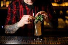 Tattooed barman decorating tasty Sherry Cobbler drink in a cocktail glass with mint leaves. On the bar counter royalty free stock images