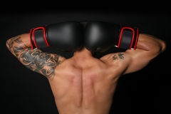 Tattooed Boxer. Reverse shot of a handsome male boxer with black, white and red gloves on Stock Photography
