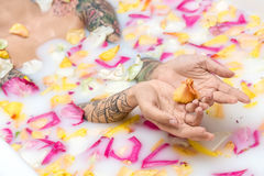 Tattooed girl relaxing in bath. Cute girl with colorful tattoos lies in the water with milk and flower petals. She holds some petals on her palms. Closeup stock images