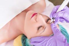 Tattooing permanente das sobrancelhas na moça bonita imagem de stock