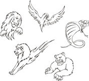 Tattoos - predator animals Royalty Free Stock Image