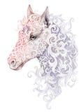 Tatuaż, piękna końska głowa z grzywą Zdjęcia Royalty Free