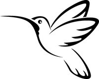 Tatuażu hummingbird dla ciebie projektuje Zdjęcia Stock