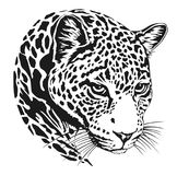 Tatuagem da cara do leopardo, ilustração do vetor, cópia Foto de Stock Royalty Free