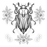Tatuagem de Boho Besouro do escaravelho de Blackwork Fotografia de Stock Royalty Free