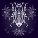 Tatuagem de Boho Besouro do escaravelho de Blackwork Imagem de Stock