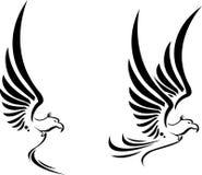 Tatuagem de Eagle do voo para você projeto Fotos de Stock Royalty Free