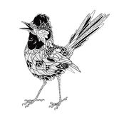 Tatuagem do pássaro psicadélico, estilo do zentangle Ilustração do vetor Imagem de Stock