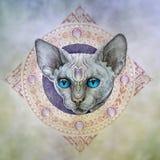 Tatuagem, os gatos principais no círculo Fotografia de Stock