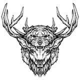 Tatuagem principal dos cervos e do tigre Ilustração desenhado à mão psicadélico do estilo Imagens de Stock