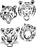 Tatuaggio della tigre Illustrazione di Stock