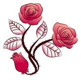 Tatuaje color de rosa de las flores del triple Fotos de archivo libres de regalías