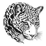Tatuaje de la cara del leopardo, ejemplo del vector, impresión Foto de archivo libre de regalías