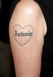 Tatuaje del ` s de Melanie Griffith fotos de archivo libres de regalías