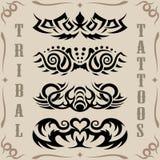 tatuerar stam- Arkivbild