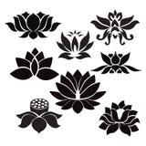 Tatuering för Lotus blommor - illustration på vit bakgrund Arkivbild