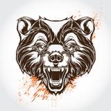 Tatueringbjörn Arkivbild