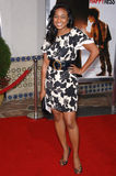 Tatyana Ali Royalty Free Stock Images