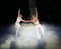 Tatyana Tot'mjanina e máximo Marinin fotografia de stock royalty free
